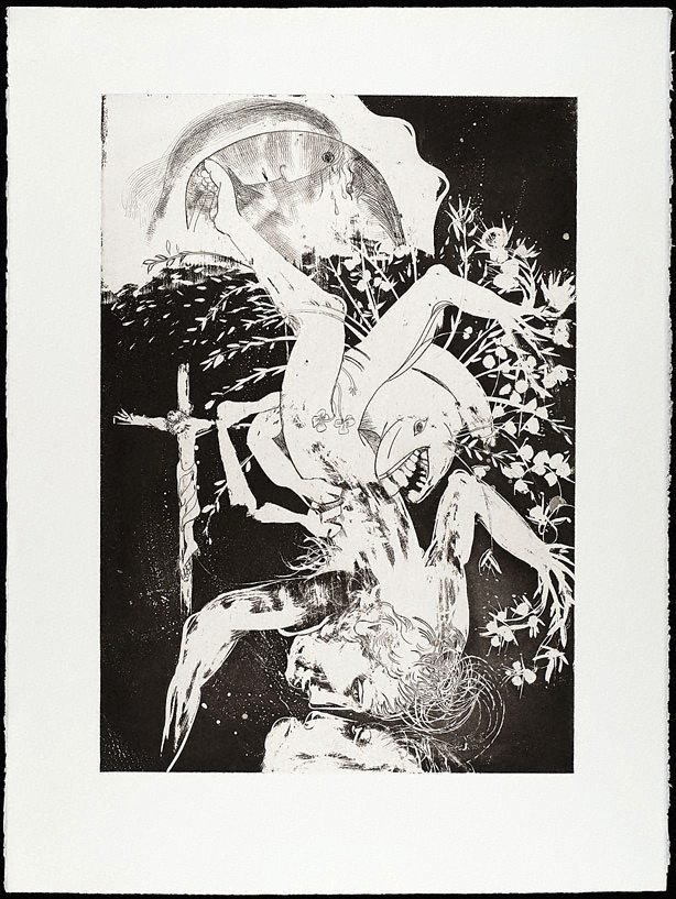An image of (Illustration for Peter Porter's poem 'Narcissus laments Orpheus')