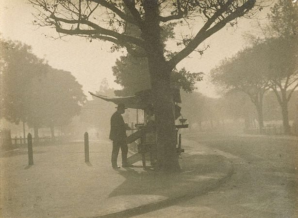 An image of Untitled (Man standing at fruit stall in a park)