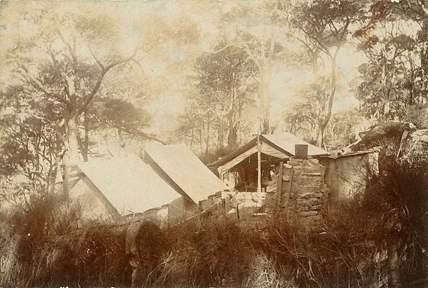 An image of Curlew Camp