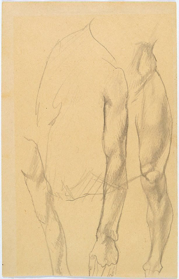 An image of Study of two arms, leg