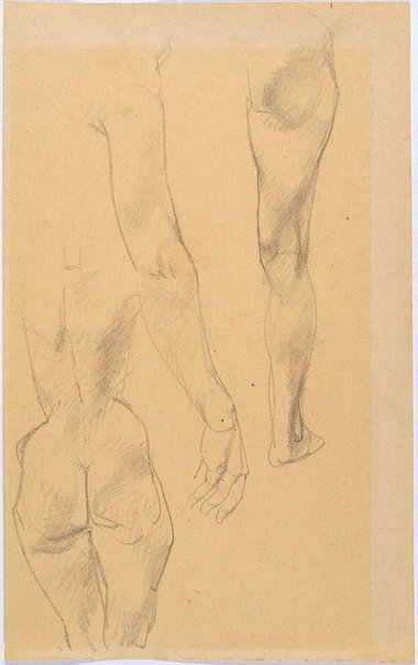 An image of Study of female nude from rear, arm, leg by Eric Wilson