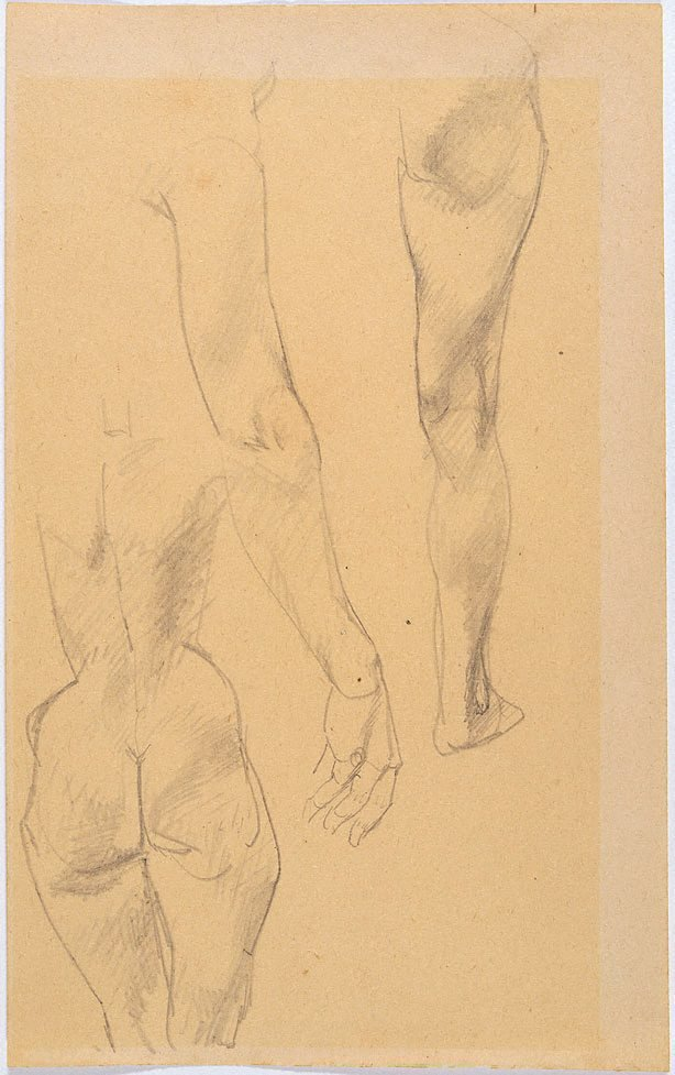 An image of Study of female nude from rear, arm, leg