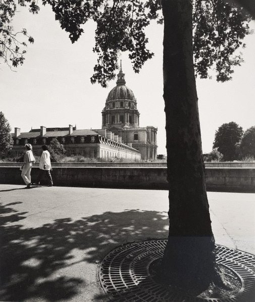 An image of Untitled (tree on Boulevard de la Tour Maubourg, with Hôtel des Invalides in the distance) by Max Dupain
