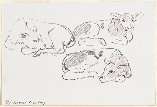 An image of (Three studies of a calf) by Lionel Lindsay