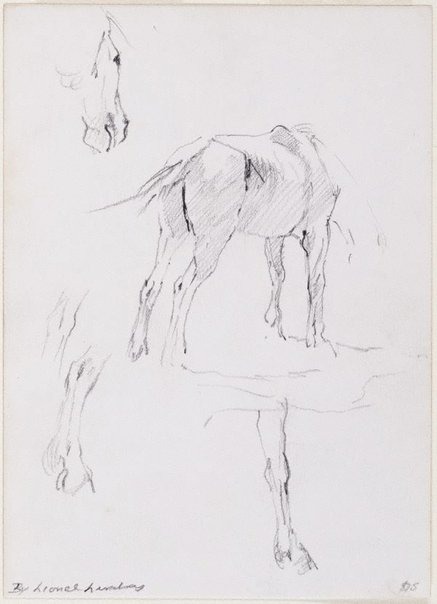 An image of (Studies of a horse) by Lionel Lindsay