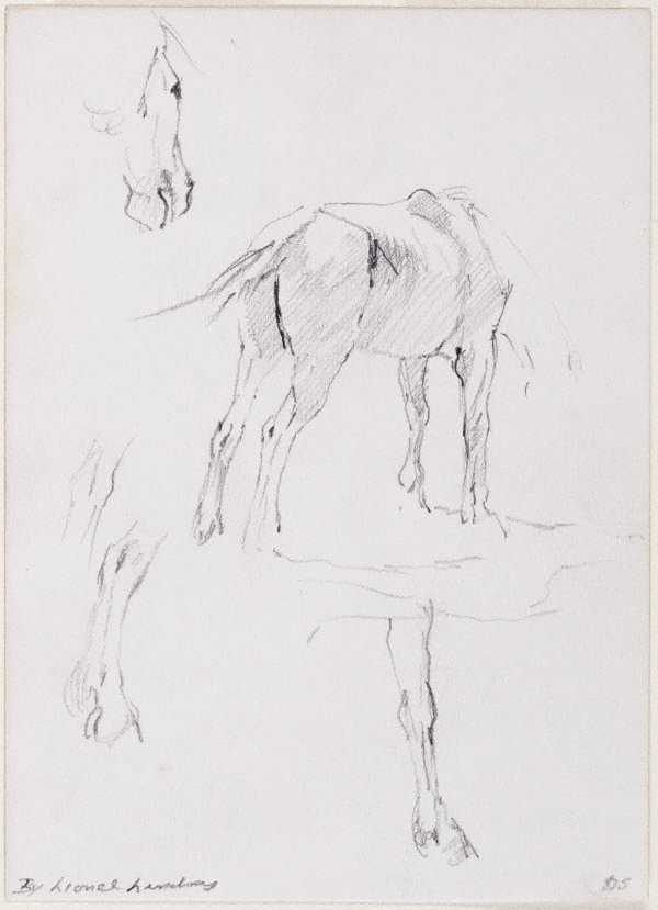 An image of (Studies of a horse)