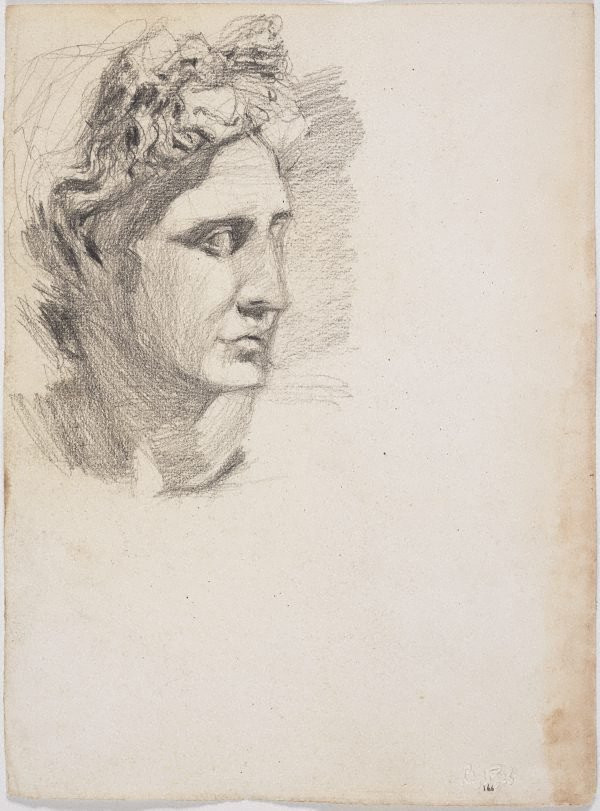 An image of recto: Apollo, Head from the cast verso: Écorché study of male figure