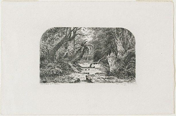 An image of Pigeon Bay Creek, Banks Peninsular, New Zealand