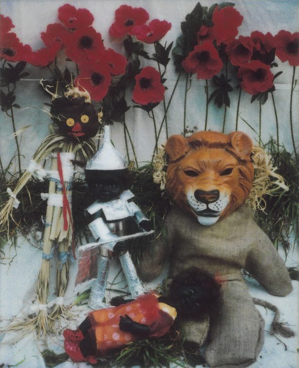 An image of Under the spell of the poppies