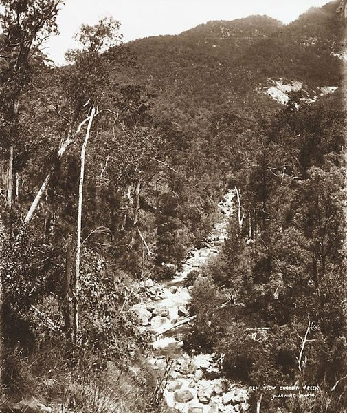 An image of General view, Eurobin Creek by Nicholas Caire