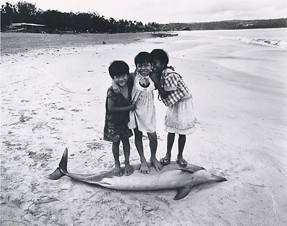 An image of Three girls on a deceased dolphin, Bali