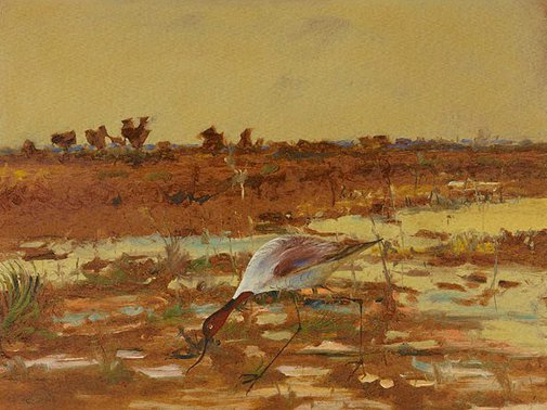 An image of Painted lady (red-necked Avocet) by Sidney Nolan