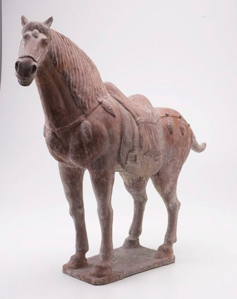 An image of Horse by