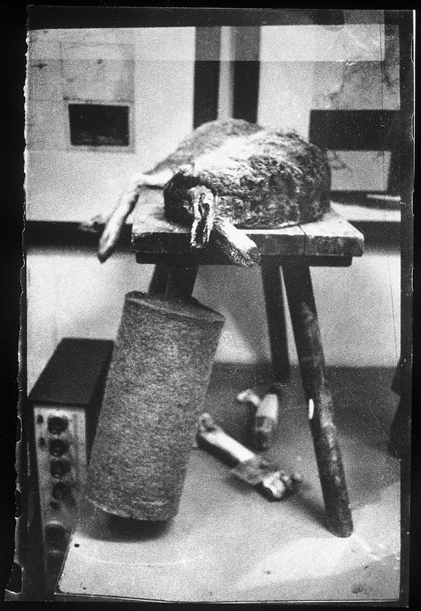 An image of From the Action by Joseph Beuys 'Explaining pictures to a dead hare'