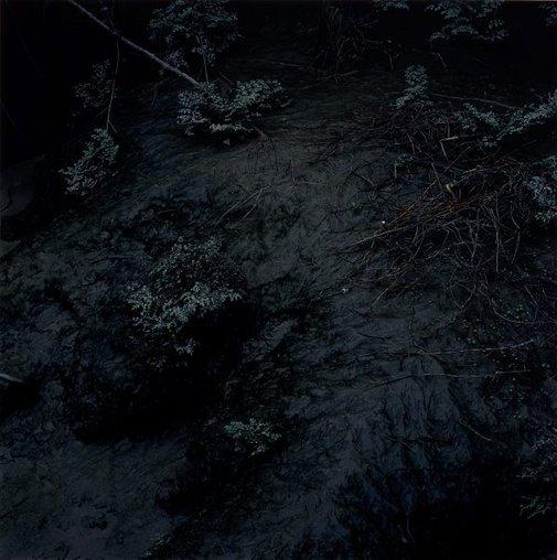An image of untitled III (Backwater) by Anne Ferran