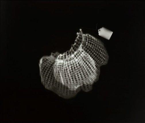 An image of untitled (cuffs) by Anne Ferran