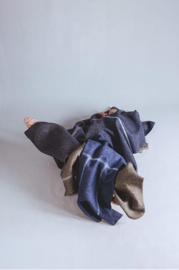 An image of Clamorous shrike
