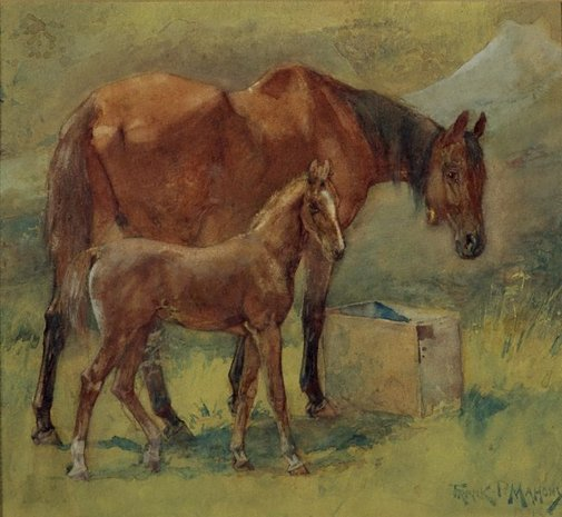 An image of Mare and foal by Frank Mahony