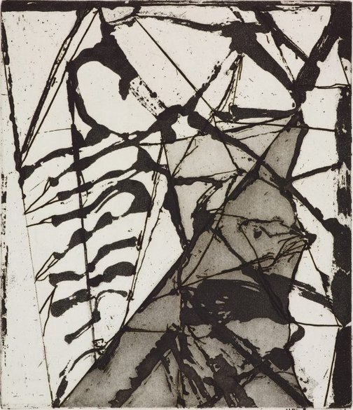 An image of 16 by Brice Marden