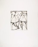 Alternate image of 24 by Brice Marden