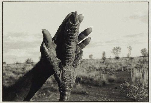 An image of Emu hand by Jon Rhodes