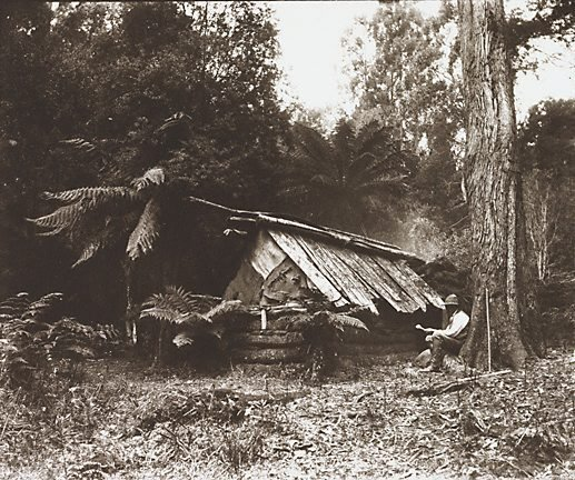 An image of Untitled (settler's hut)