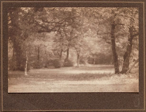 An image of Untitled (landscape, path through wood)