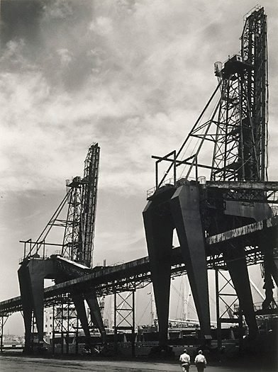 An image of Cranes at Newcastle