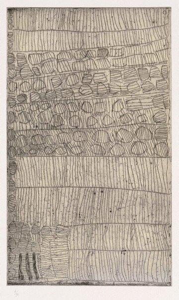 An image of Untitled by Taracarijimo Freda Warlapinni