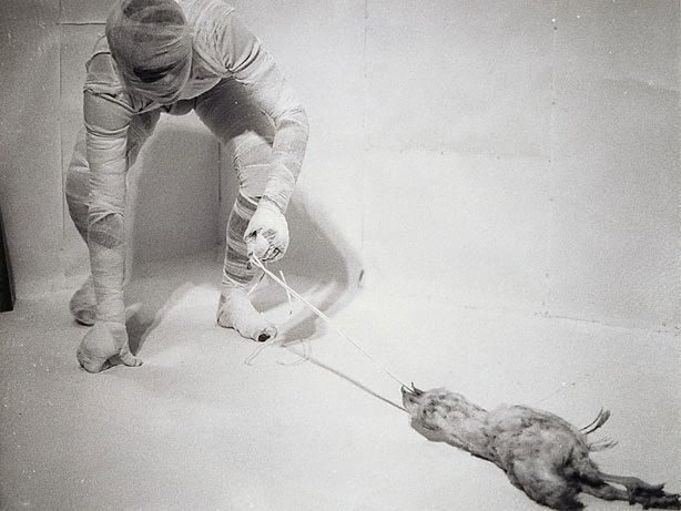 An image of 6. Aktion 1966, Wohnung Schwarzkogler, 1010 Wien, Werdertorgasse