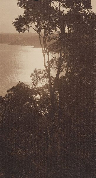An image of Athol Bight (near Bradleys Head) by Norman C Deck