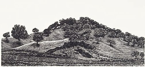 An image of Hill by Rosalind Atkins