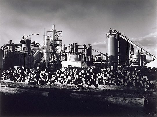 AGNSW collection Max Dupain Pyneboard Factory, Tumut, New South Wales (2) (1977, printed 1983) 53.1987