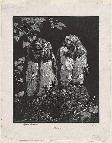 An image of Owls by Lionel Lindsay