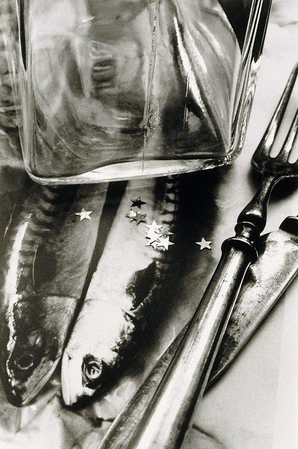 An image of 13 Clues to a fictitious crime circa 1940 - 1941
