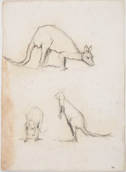 An image of Kangaroos by Lloyd Rees