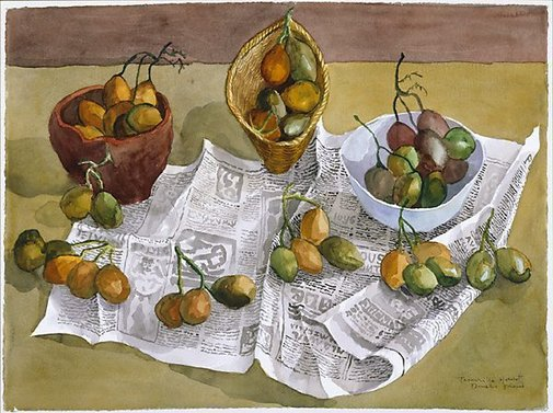 An image of Tamarillo harvest by Donald Friend