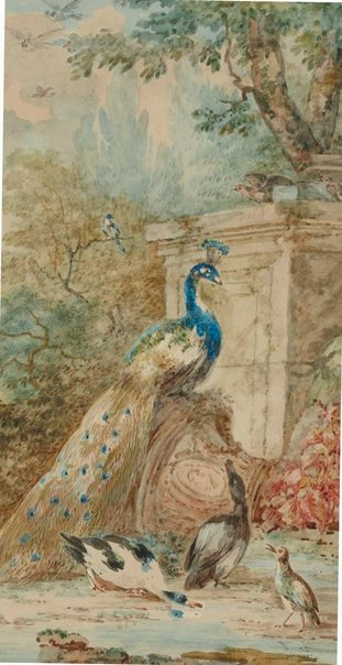 An image of Peacock and poultry in landscape by Abraham Meertens