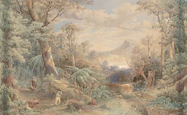 An image of A bush scene, New Zealand
