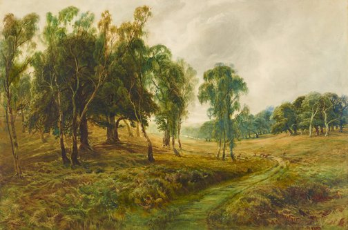 An image of Cannock Chase – 'When the sweet wind did gently kiss the trees, and they did make no noise' by Bernard Evans