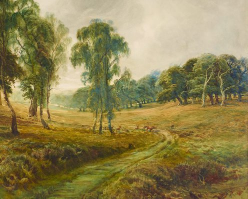 Alternate image of Cannock Chase – 'When the sweet wind did gently kiss the trees, and they did make no noise' by Bernard Evans