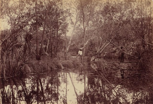 An image of In the gorge, Katherine River