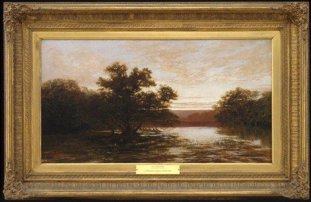 An image of An Australian mangrove, ebb tide