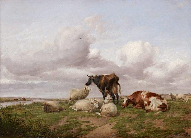 An image of Canterbury meadows
