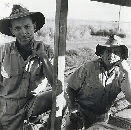 An image of Cane train drivers, Queensland