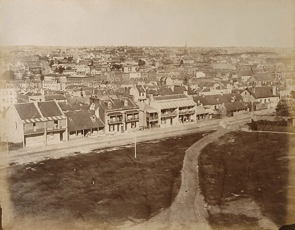 An image of Upper Fort Street from Observatory Hill