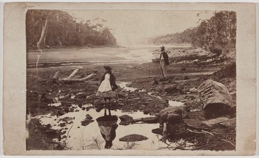 An image of Australian scenery, Middle Harbour, Port Jackson by Unknown photographer