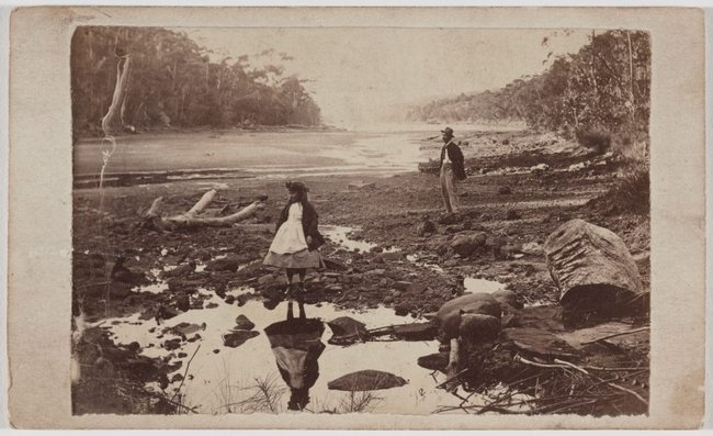 AGNSW collection Unknown photographer Australian scenery, Middle Harbour, Port Jackson (circa 1865) 585.2014