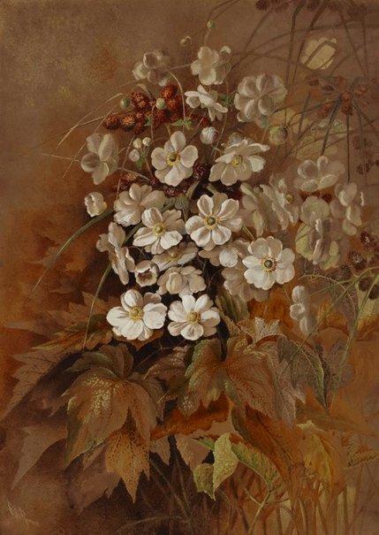 An image of Anemones by Ellis Rowan