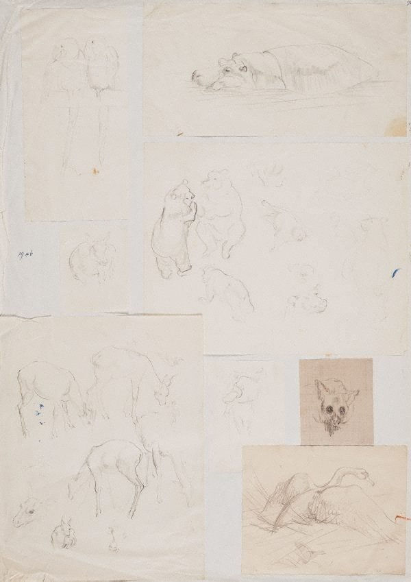 An image of (Album page with 8 sheets affixed, animal studies)
